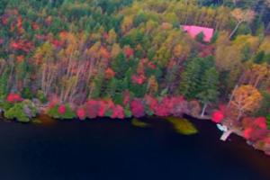 湖 いろいろな色に色付いた紅葉
