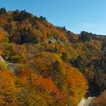 愛知茶臼山高原の紅葉2017。見頃とライトアップ。渋滞回避は?