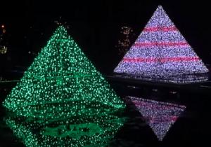 あしかがフラワーパーク イルミネーション 光のピラミッド