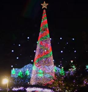 あしかがフラワーパーク イルミネーション クリスマスツリー