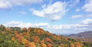 青空と山頂を彩る紅葉