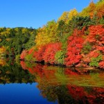 八ヶ岳高原の紅葉2017。見頃時期やおすすめ登山ルートは?