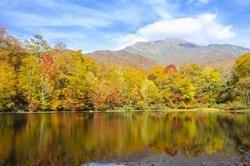 山 湖 紅葉 秋景色