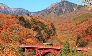 八ヶ岳高原 紅葉