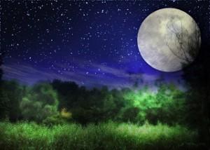 美しい 満月