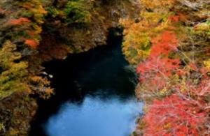 湖湖畔の色とりどりの紅葉