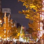 御堂筋イルミネーション2018-2019!期間と時間は?交通規制は?