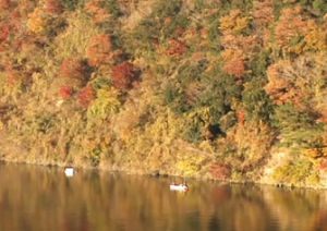 亀山湖の壮大な紅葉と水面反射