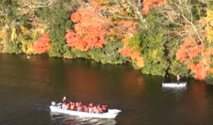 亀山湖 紅葉 クルーズ