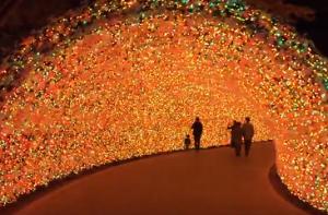 なばなの里 イルミネーション 光のトンネル
