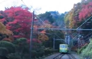 高尾山 紅葉 ケーブルカー