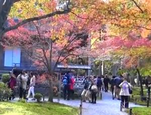 三千院 紅葉と観光客