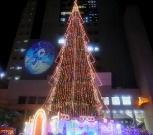 ドイツクリスマスマーケット大阪 クリスマスツリーイルミネーション