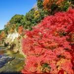 養老渓谷の紅葉2018!見頃時期とライトアップ時間。コースは?