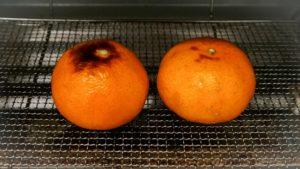 トースターで焼きみかん
