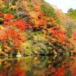 亀山湖の紅葉2016見頃時期。クルーズやハイキングで紅葉狩り!