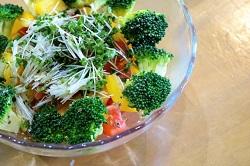 ブロッコリースプラウト 食べ方
