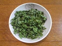 ブロッコリースプラウト 食べるサプリ