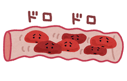 血の巡り 血液