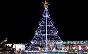 まんのう公園ウインターファンタジー クリスマスツリー