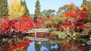 永観堂 放生池に映り込む美しい紅葉風景