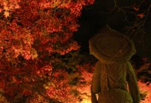 永観堂 紅葉 銅像 ライトアップ