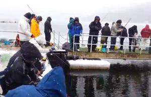 余呉湖 ワカサギ釣り 雪