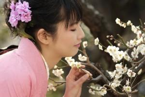 着物の女性 梅の花