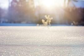 早朝の陽の光に照らされた一面の雪