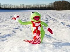 雪合戦する蛙の人形