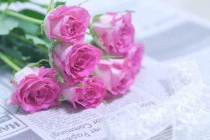 新聞紙とピンクのカーネーション