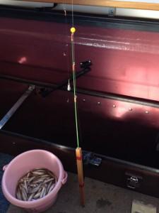 ドーム船でのワカサギ釣り 釣果