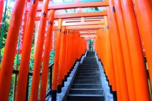 赤坂 日枝神社 稲荷参道 鳥居