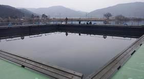 余呉湖 ワカサギ釣り 釣り場