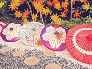 和傘 おしゃれ