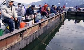 余呉湖 釣り