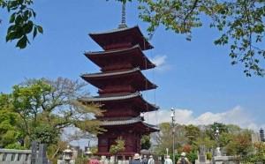 池上本門寺  五重塔