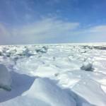 知床流氷2018の時期や接岸状況は?流氷ウォークを楽しもう!
