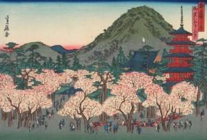 桜 お花見 昔の絵