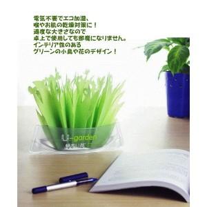 出典:http://store.shopping.yahoo.co.jp/