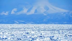 知床 流氷 接岸