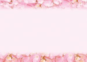 ピンク 花びら