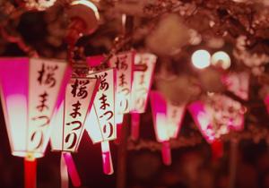 隅田公園 桜まつり 提灯 ライトアップ