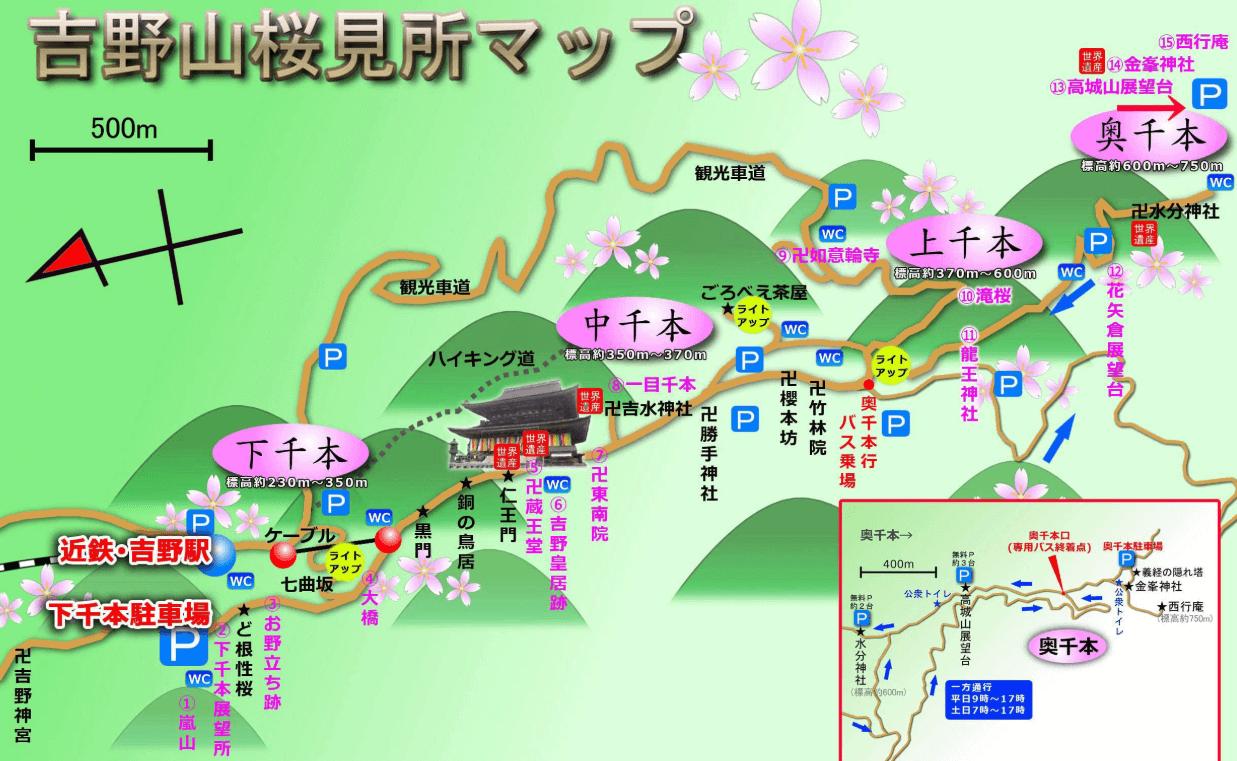 吉野山 桜 マップ
