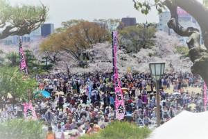 姫路城 観桜会