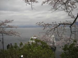 海津大崎 琵琶湖 桜 船