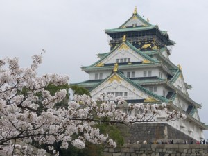 大阪城 桜 西の丸公園