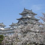 姫路城の桜2017。見頃と開花状況。ライトアップやお花見場所は?