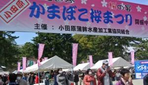 小田原かまぼこ桜まつり