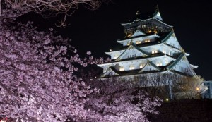 大阪城公園 桜 ライトアップ